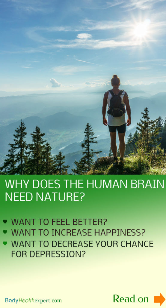 effects of nature to our brain function